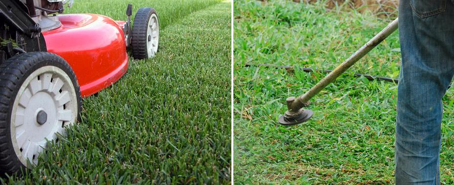 entretien jardin angers 49 elagueur paysagiste angers On entretien jardin angers